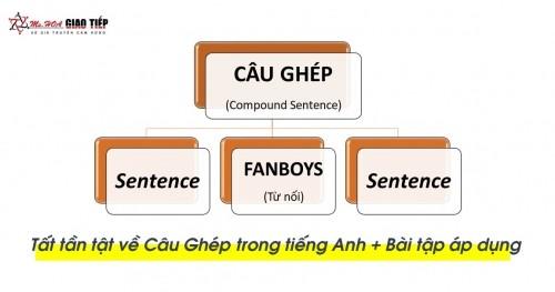 Câu ghép trong tiếng Anh (compound sentence) – Những điều bạn cần biết