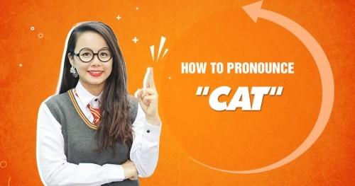 Unit 1: How to pronounce
