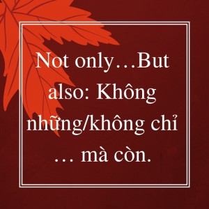 Cấu trúc Not only but also