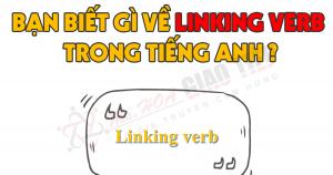 Liên Động Từ (Linking verb) Trong Tiếng Anh