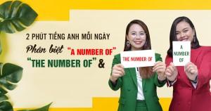 [2 Phút Tiếng Anh Mỗi Ngày] Bí kíp phân biệt 'A number of' và 'The number of'